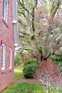 Five Oaks homestead