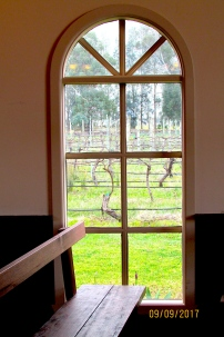 Immerse chapel window vista vines 2017 spring