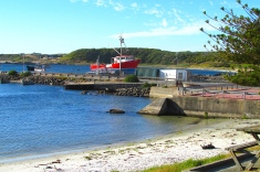 King Island Currie harbour beach dog sand Jan 2018