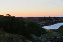 King Island Currie sunset a1 colours