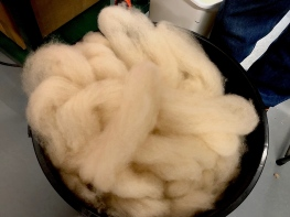 Alpaca wool raw Omaru Aug 2018