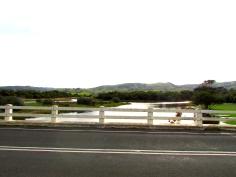 Apollo Bay wetland bridge hills 30 Apr