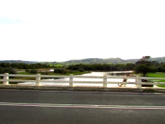 Apollo Bay wetland bridge hills 30 Apr