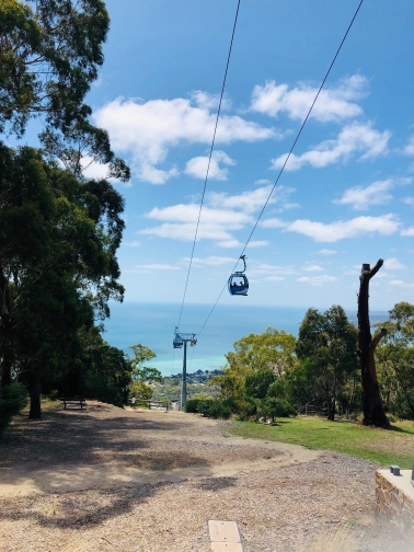 Mornington Arthurs Seat cable carts 2020